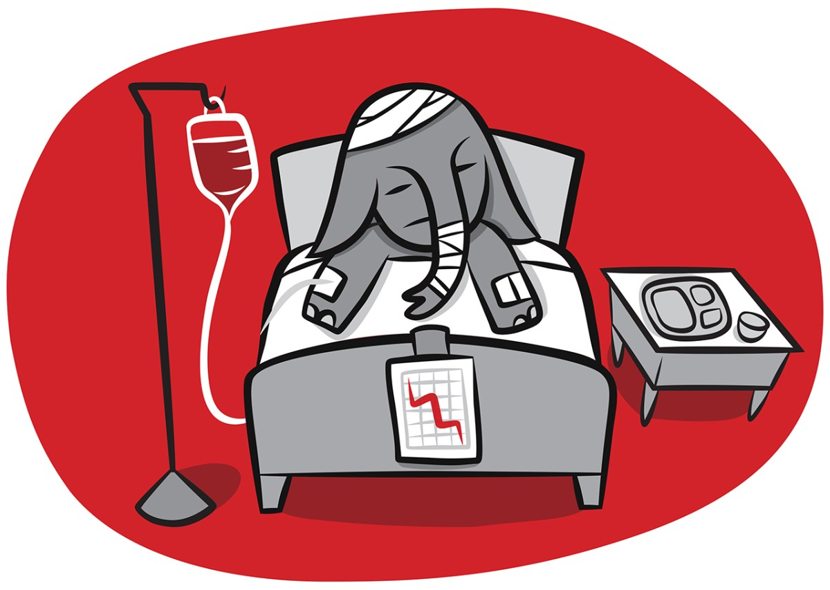 cartoon of hospitalized elephant