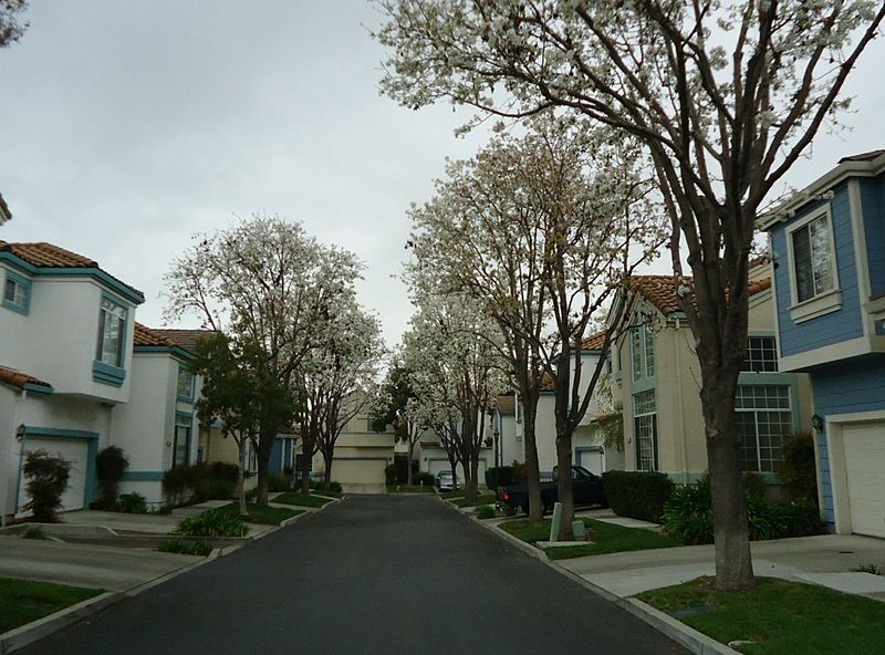 housing in santa clara