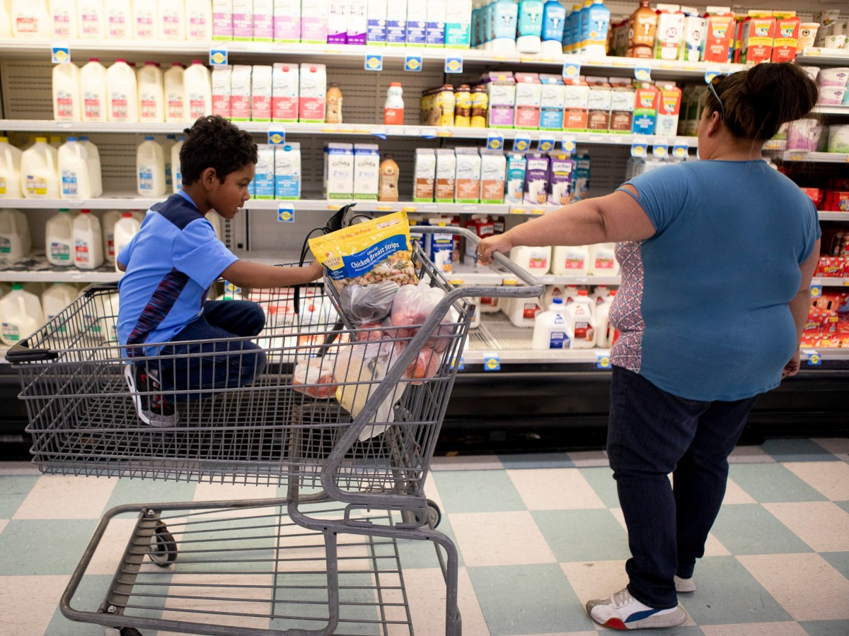 Antionette Martinez and her son Caden, 5, who receive CalFresh, do their weekly grocery shop at FoodMaxx on July 26, 2019. Photo by Anne Wernikoff for CalMatters