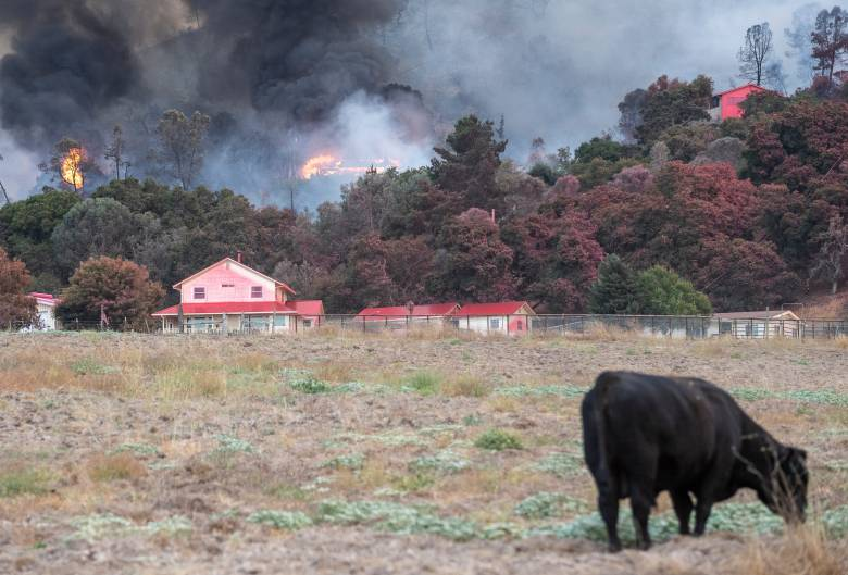 The River Fire destroyed nearly 3,000 acres and threatened 1,500 structures in Salinas, Calif., on Aug. 16, 2020 after an early morning lightning storm. Residents of Pine Canyon Road, Parker Road, Laurel Lane and Trimble Hill Lane have been ordered to evacuate their homes due to threat of the growing fire, which has only been contained 10% by firefighters. Photo by David Rodriguez