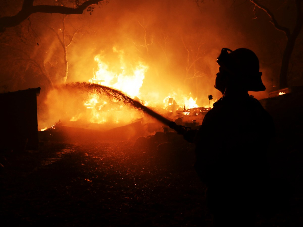West Sacramento firefighters battle the Camp Fire on Honey Run Road in Paradise on Nov. 9, 2018. Photo by Ray Chavez, Bay Area News Group