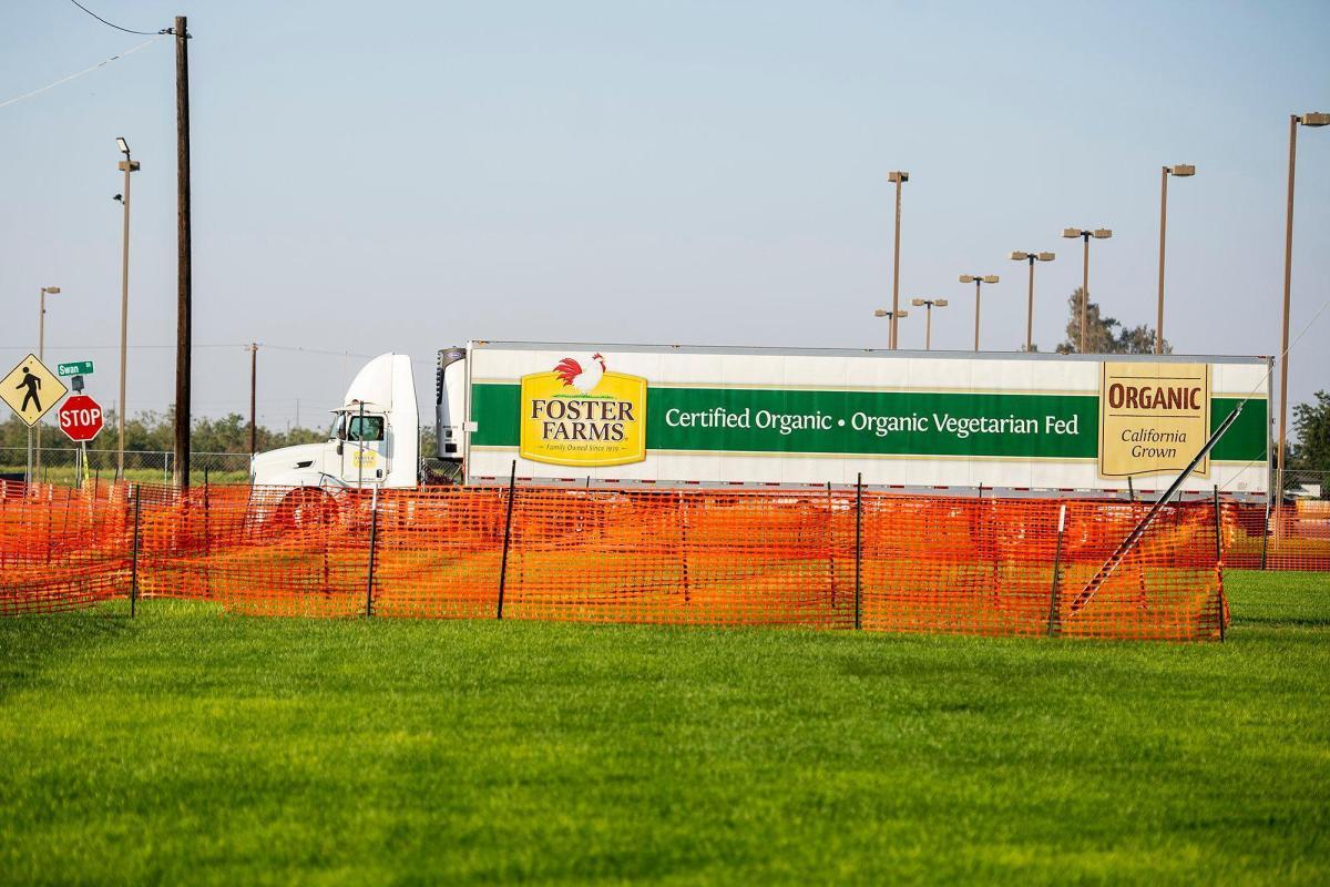 Los vehículos, incluidos los camiones de Foster Farms, entran y salen de las instalaciones de Foster Farms ubicadas en 1000 Davis Street en Livingston, el jueves 27 de agosto de 2020. Foto de Andrew Kuhn, Merced Sun-Star