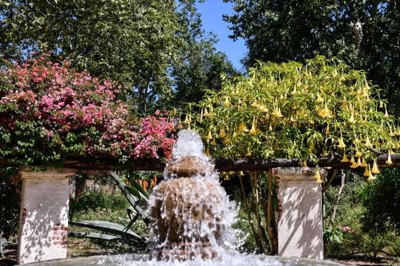 A water fountain located at Descanso Gardens in La Cañada Flintridge, on June 22, 2021. Pablo Unzueta for CalMatters