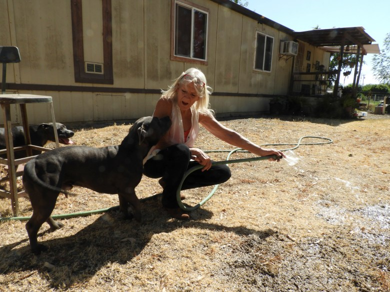 Kelly O'Brien and her dog Louie enjoy water flowing through the hose for the first time in more than a month, after a new pump was installed deeper in her well in order to reach the sinking groundwater supply, July 2, 2021. Photo by Rachel Becker, CalMatters