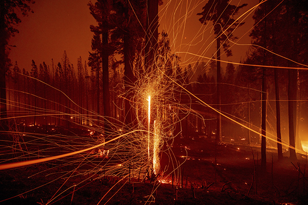 In this long exposure photo, embers fly from burning trees as the Caldor Fire grows on Mormom Emigrant Trail east of Sly Park on Aug. 17, 2021. Photo by Ethan Swope, AP Photo