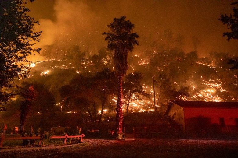 The LNU Lightning Complex wildfire burns a hillside behind the Canyon Creek Resort in Winters on Aug. 20, 2020. Photo by Anda Chu, Bay Area News Group