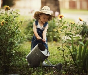 Image shows a very young boy in dungarees and a straw hat watering sunflowers using a large old-fashioned watering can. Use this scene to imagine the body as a garden being gently tended to, as described in this article on CALMERme.com.