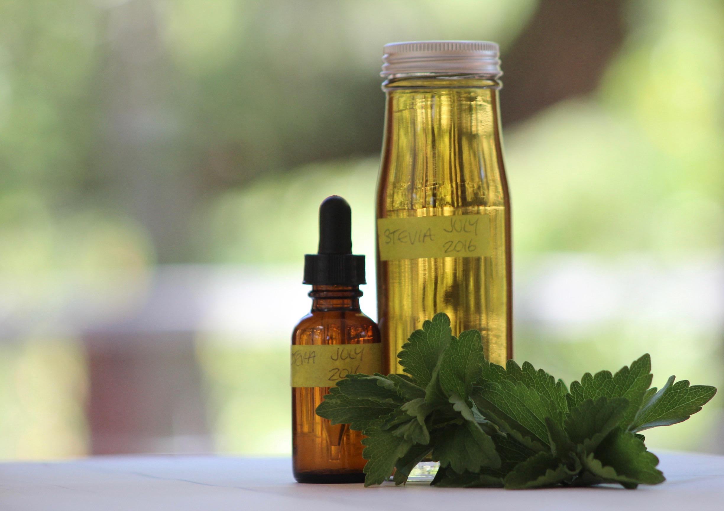 Homemade stevia extract, easy to make, recipe on CALMERme.com