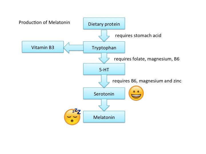 Diagram depicting melatonin production in the body from CALMERme.com