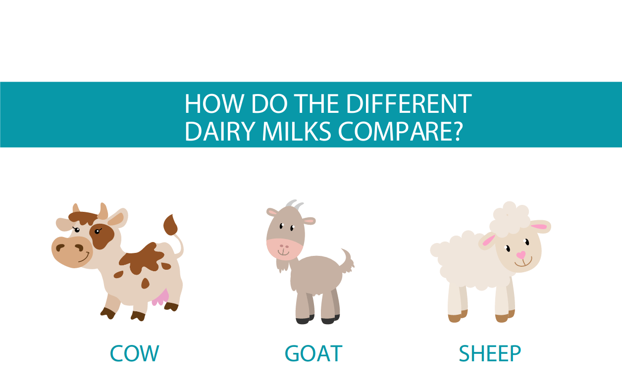 Cow vs goat vs sheep dairy comparison from CALMERme.com