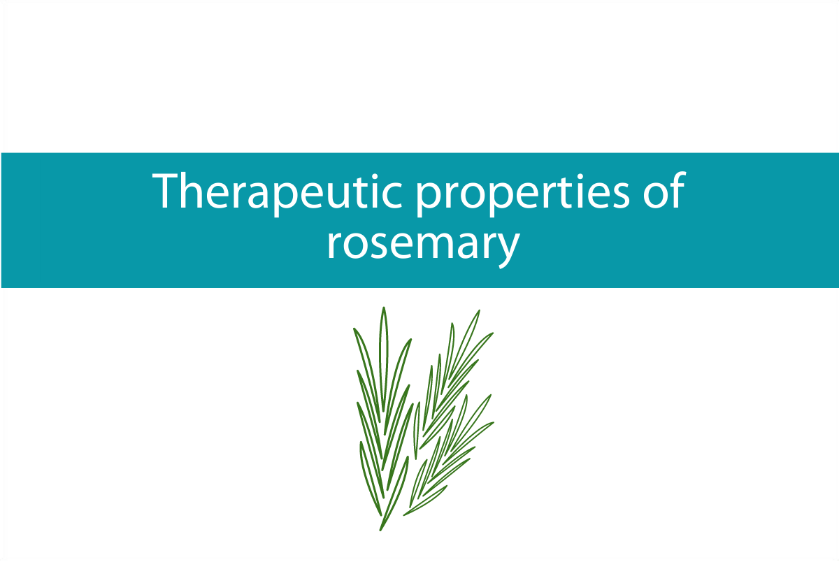 Blogheader for post on the therapeutic properties of rosemary from CALMERme.com