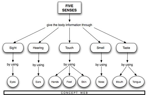 how senses woks