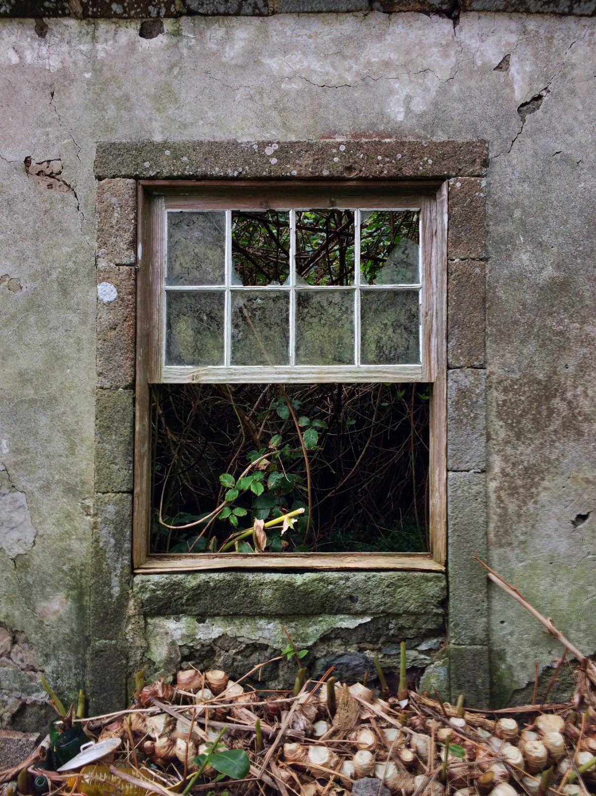 Window of Casa da Ganhoa