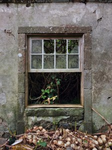 Window of house 1