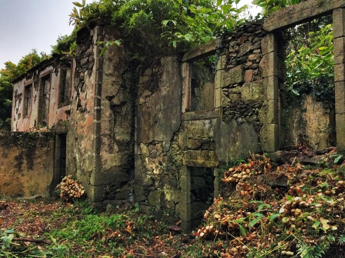 Façades of Casa do Verde and Casa dos Figos Maduros