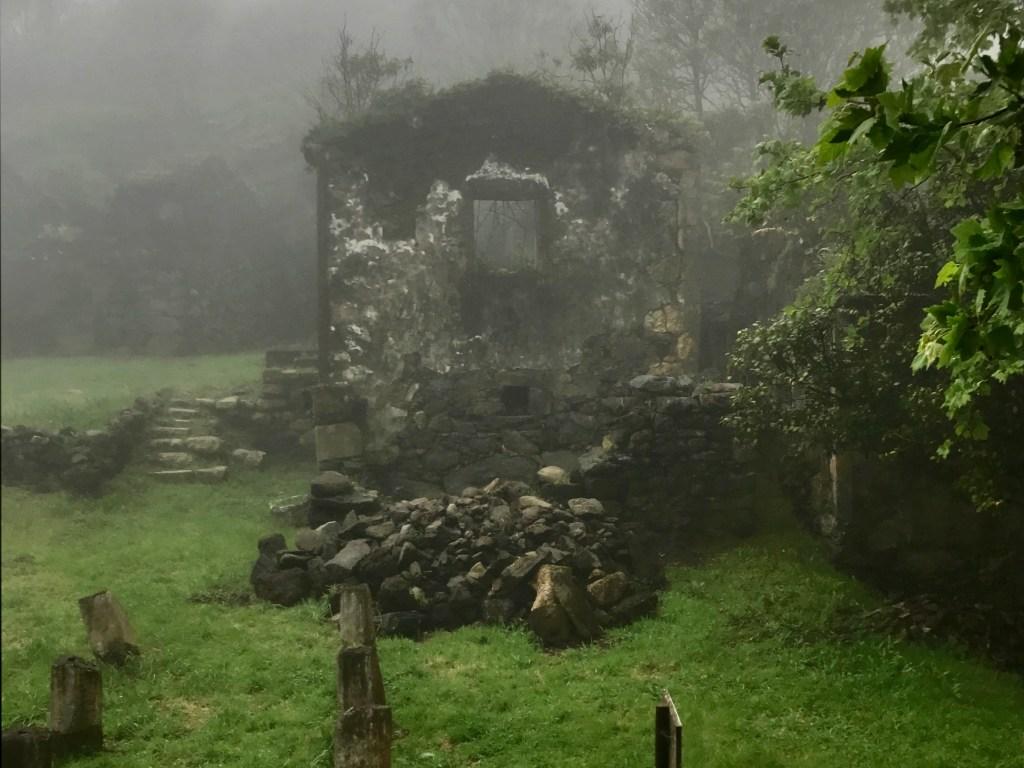 Misty Casa das Figueiras