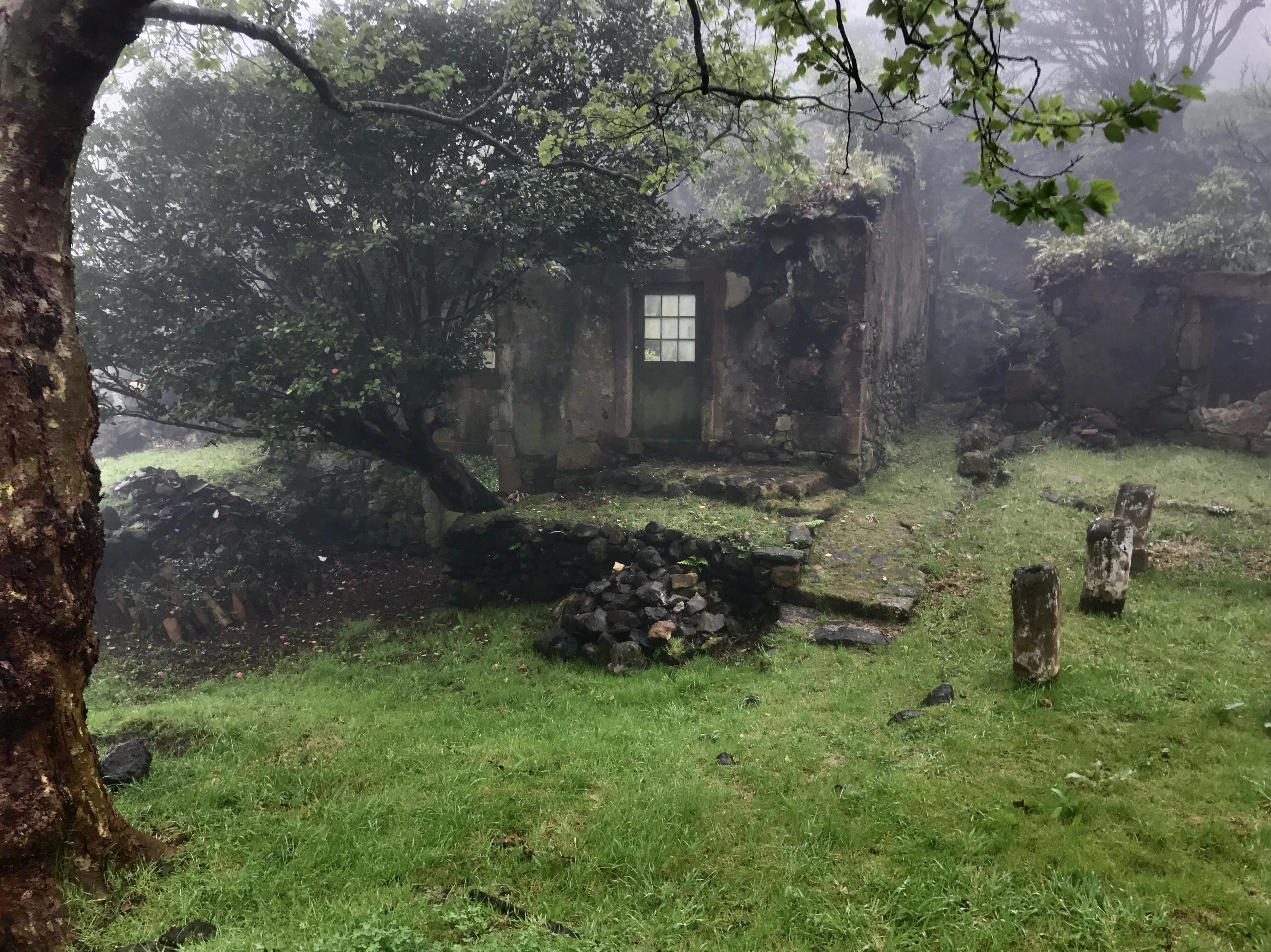 Casa das Flores under mist