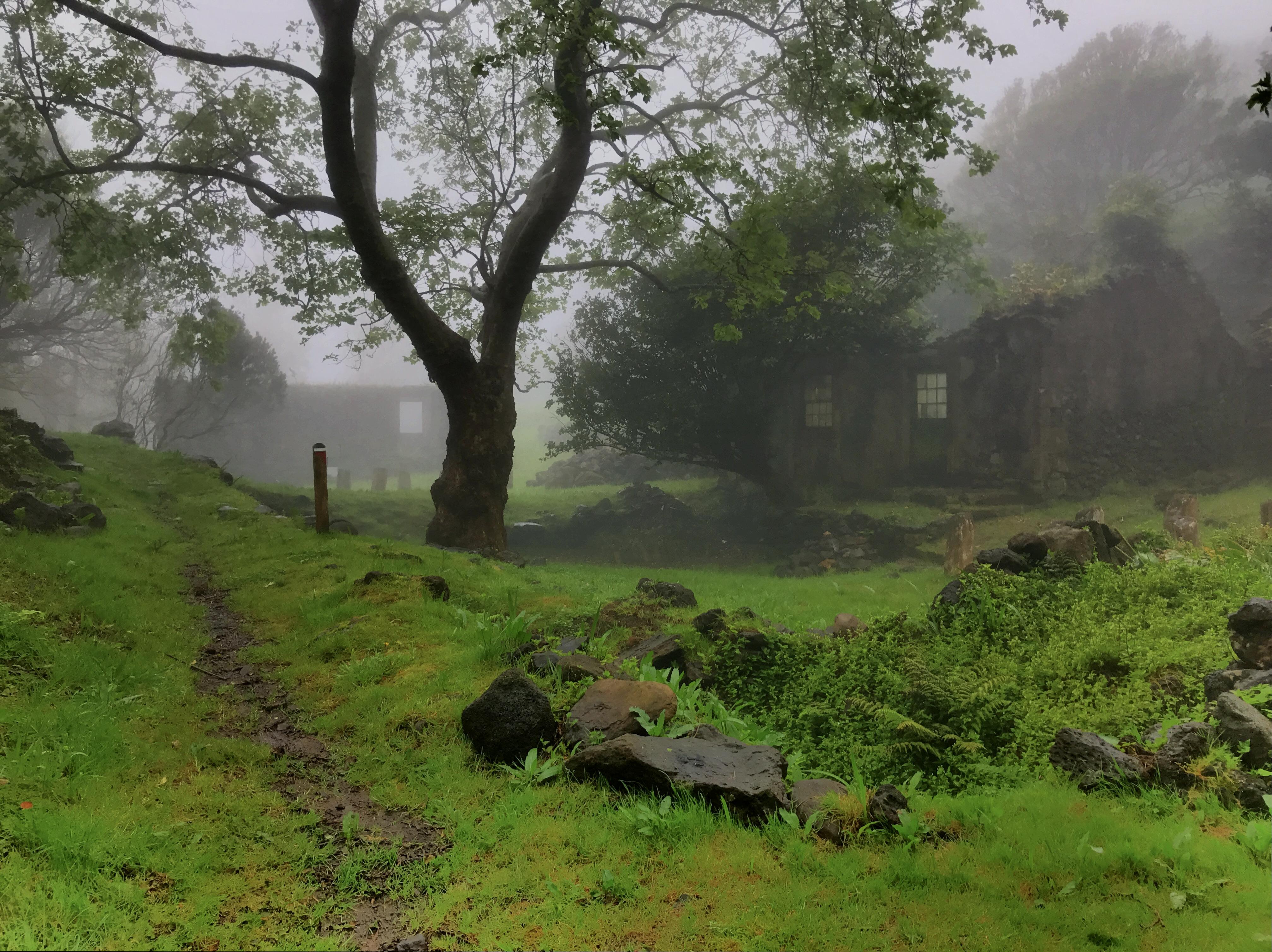 Casa das Levadas e Casa das Flores sob o nevoeiro