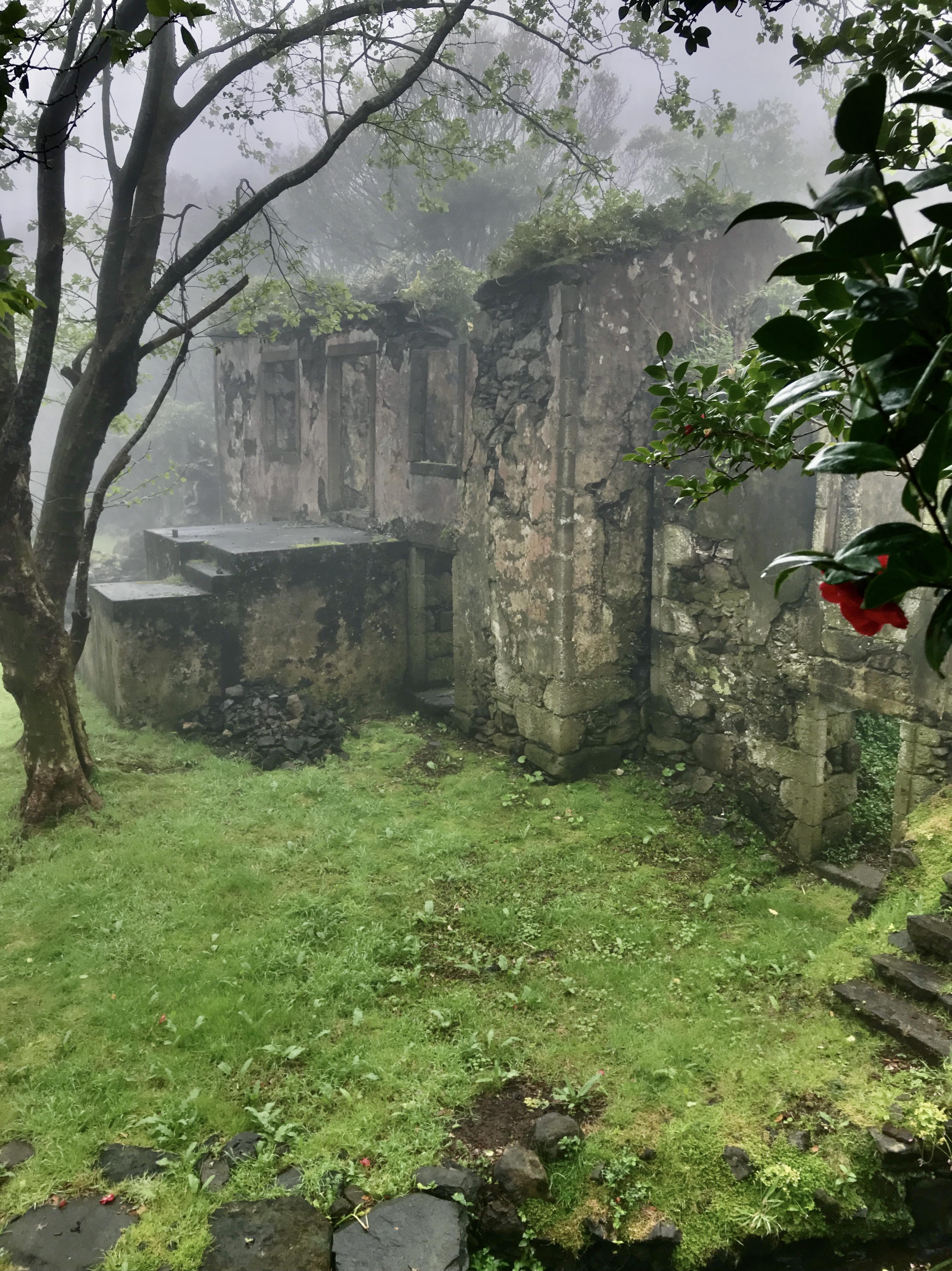 Casa dos Figos Maduros sob o nevoeiro
