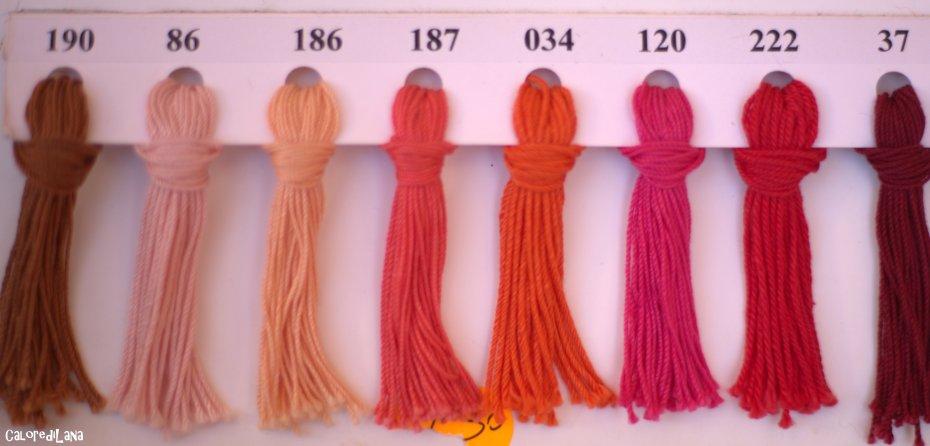 Catalogo Cotone Corallo Rosa2 - Calore di Lana