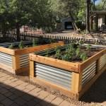 Backyard Gardener Raised Bed Construction April 8 2020