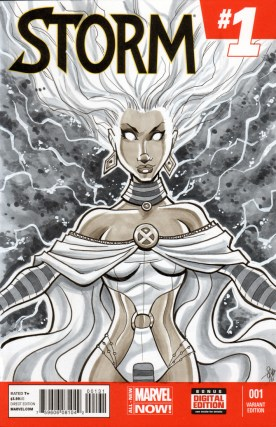 Storm Sketch Cover