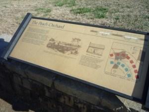 More Shiloh: The Peach Orchard
