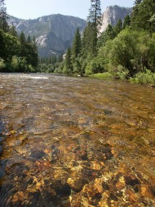 A 5 1/2-mile stretch of the Merced River will be closed to fishing. (IVOSHANDOR/WIKIMEDIA)