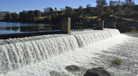 The Feather River Hatchery's fish ladder will open on Monday with salmon heading upstream to spawn. (CDFW)