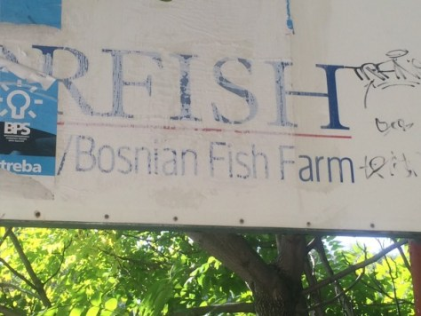 I stumbled onto the remains of a Bosnian fish hatchery next to the Buna River.