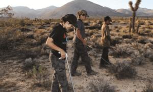 A snake hunt