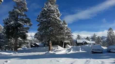 Caples Snow 1.7.16 Crop