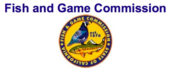 new fish and game commission executive director