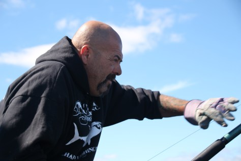 GLOUCESTER, MASS.- Captain Dave Marciano aims to bring a bluefin on board the Hard Merchandise. (Photo Credit: Pilgrim Films & Television/Mitchell Long)