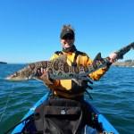 Christmas Menu: Kayak Fishing For Sharks