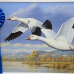 Artists Wanted For California Duck Stamp Contest