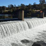 Feather River Hatchery's Opening For Salmon Spawning Business