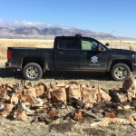 Raptor Poacher Convicted; Gets Jail Time And Fines (Update)
