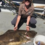 Halibut Season Off To A Great Start For Sport Anglers