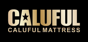 caluful logo