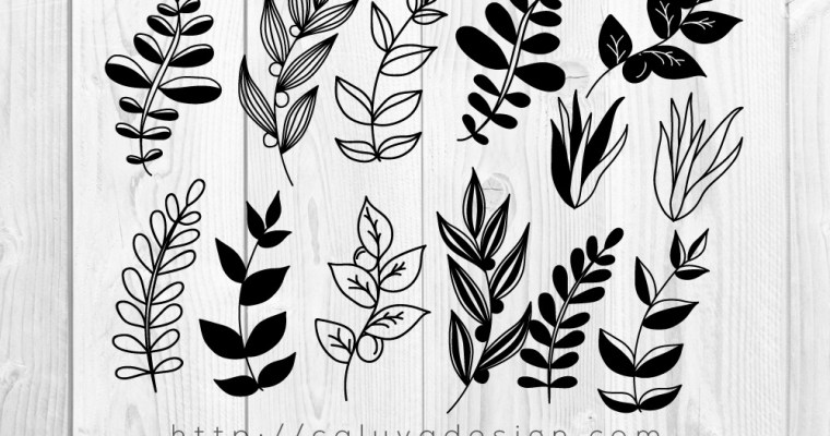 Free Botanical Leaves SVG, PNG, EPS & DXF Download