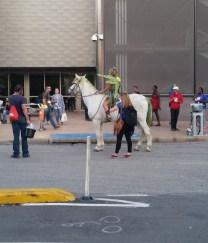 Tinkerbell on a Unicorn?