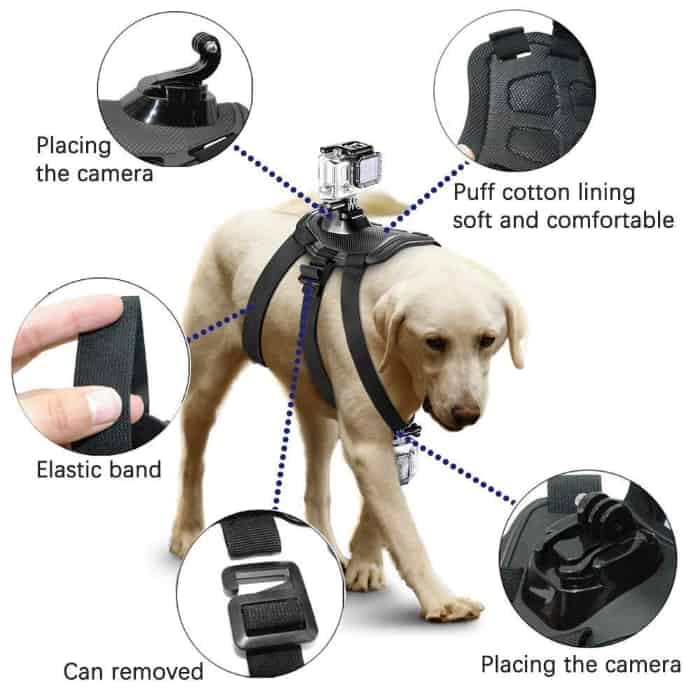 Arnés para perros y animales de micros2u