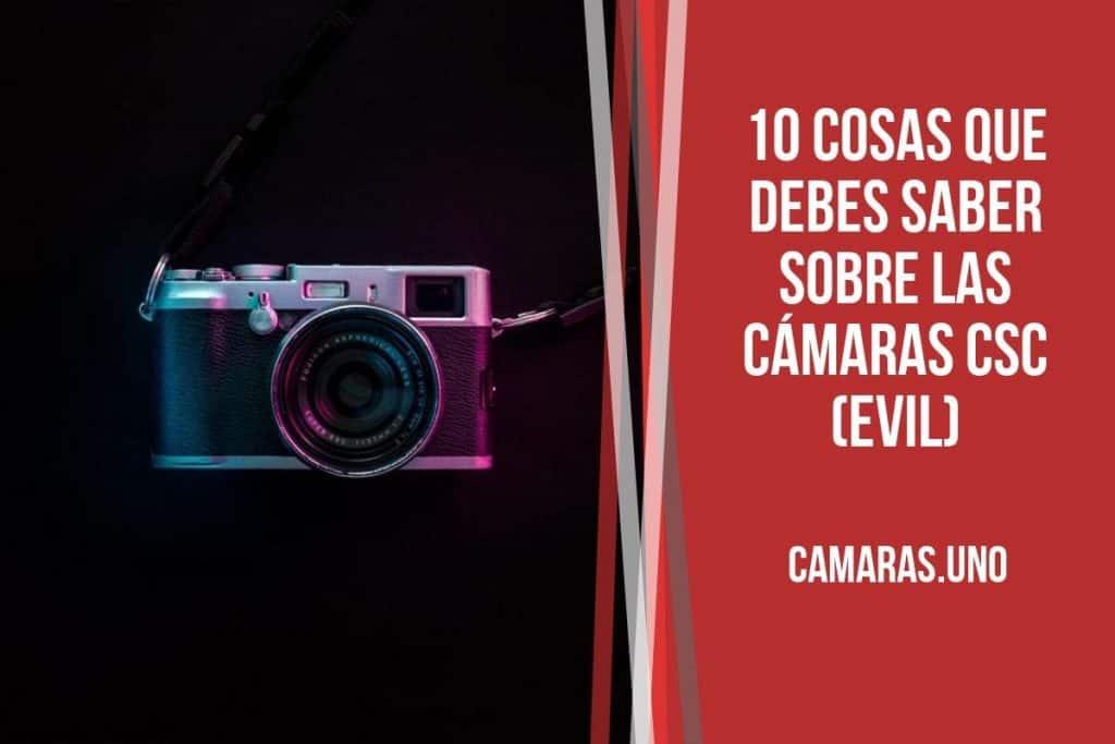 ¿Cuáles son las principales diferencias que hay que tener en cuenta a la hora de comprar una cámara fotográfica EVIL?