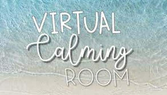 Services / D105 Virtual Calming Room