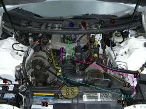 1994 34 SFI Water Pump Replacement:  Camaro Forums