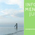 Informe Mensual #2: Junio de 2016