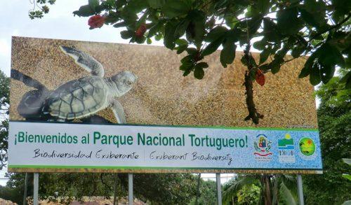 Tortuguero es un santuario natural