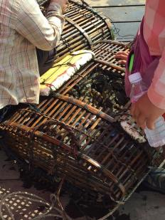 crab-basket