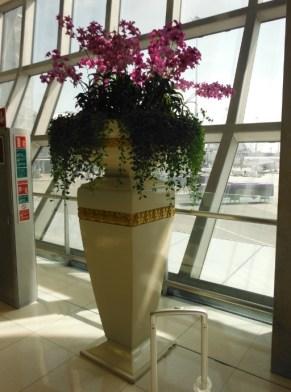 fine-foliage-bangkok-airport